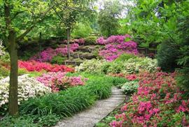 giardinofiorito2