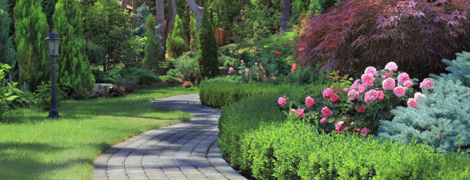 servizi-giardinaggio-03-l
